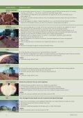Fertilisation en culture biologique - bioactualites.ch - Page 4