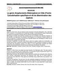 Le genre Anoplocnemis - M.elewa.org - ELEWA