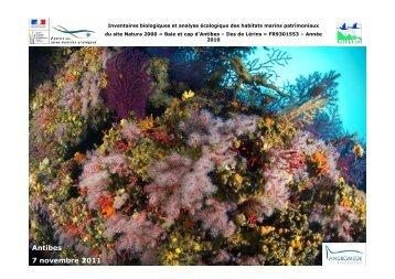 Présentation des résultats de l'inventaire écologique marin