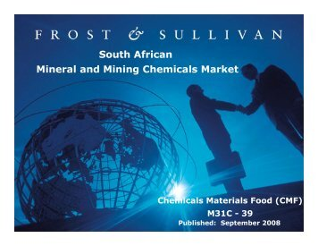 South African Mineral and Mining Chemicals Market - Growth ...