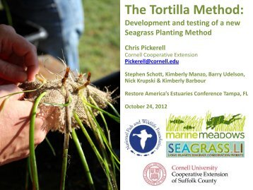The Tortilla Method: - Restore America's Estuaries