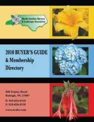 inside the buyer's guide