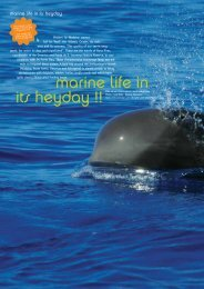 marine life in its heyday !! - PORTO BAY Hotels and Resorts
