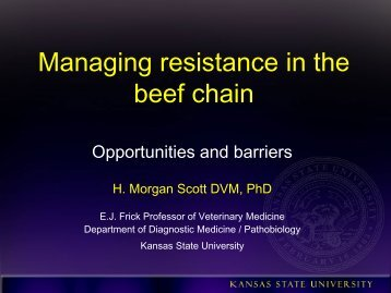 Managing resistance in the beef chain - Antimicrobial Stewardship ...