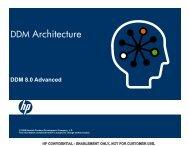 DDM Architecture