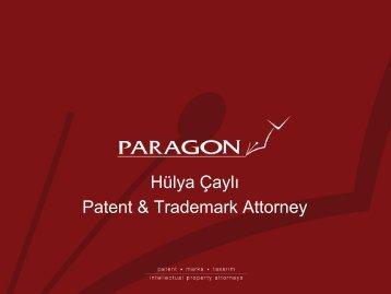 Hülya Çaylı Patent & Trademark Attorney