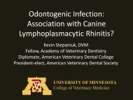 Odontogenic Infection - University of Minnesota College of ...