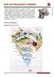sur les traces de l'homme - Cap Sciences - Page 7