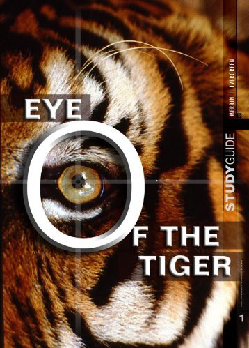 StdyGd/Eye of the Tiger RGB - PEGSnet