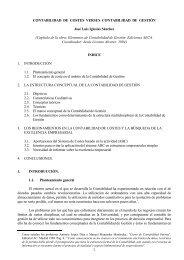 CAPÍTULO 3 - Observatorio Iberoamericano de Contabilidad de ...
