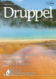 Dutch water expertise abroad The battle against fungi Six questions ...