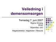 Marte Meo veiledning i demensomsorgen - Sykehjemsetaten