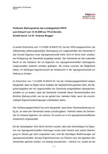 Politische Stellungnahme der Liste Fritz