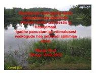 Margo Hurda ettekanne - Keskkonnaamet