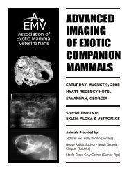 Diagnostic Imaging of Exotic Companion Mammals - AEMV ...