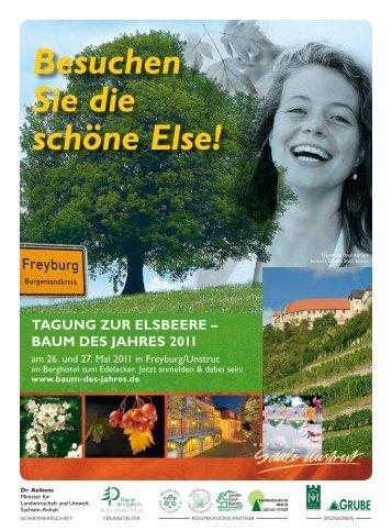 baum dEs JahrEs 2011 - Treffpunkt Wald