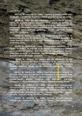 površinska litostratigrafska in tektonska strukturna karta območja t ... - Page 5