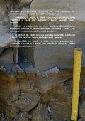 površinska litostratigrafska in tektonska strukturna karta območja t ... - Page 6