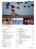 PDF Download - AM-MEER-online - Seite 3