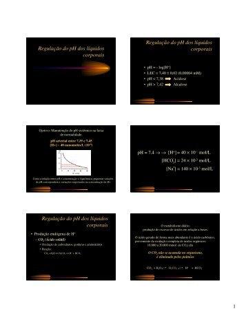 Regulação renal do equilíbrio ácido básico
