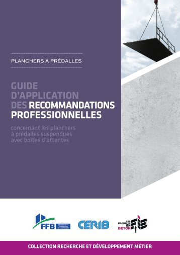 guide d'application desrecommandations professionnelles