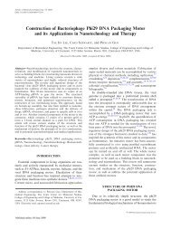 Construction of Bacteriophage Phi29 DNA Packaging Motor and its ...