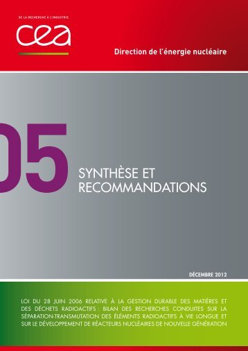 Tome 5 : « Synthèse et recommandations » - CEA