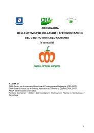 Scarica il file - Regione Campania