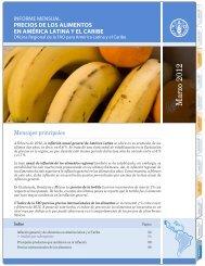 Informe mensual Precio de los alimentos en América Latina y el ...