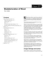 Biodeterioration of Wood - Conrad Lumber Company
