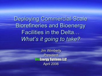 Developing Commerical-Scale Biorefineries and BioEnergy ...