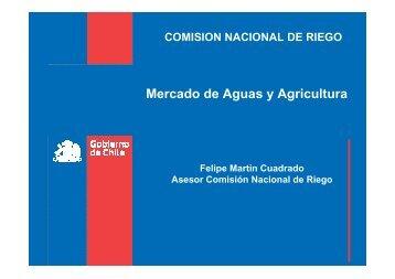 Felipe Martin - Facultad de Economía y Negocios UDD