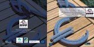 Programme de la 6ème Journée FFPP - 9 novembre 2007 - Palais ...