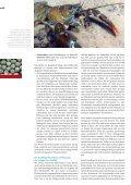 Die Zukunft der Systematik in der Schweiz - SCNAT - Seite 4