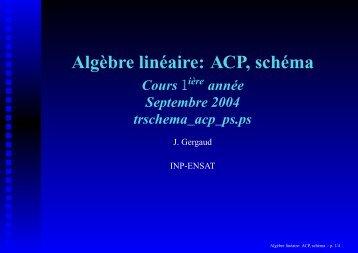 Algèbre linéaire: ACP, schéma Cours - Enseeiht
