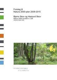 Forslag til Natura 2000-plan 2009-2015 Bjerre Skov ... - Naturstyrelsen