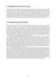 2. Neurónové siete a nervový systém - KSP