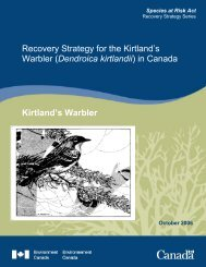 2006 Environment Canada. Recovery Strategy for the Kirtland's ...