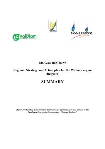 Regional Strategy and Action plan - Biogas Regions project