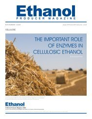 the important role of enzymes in cellulosic ethanol - Novozymes