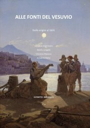 Alle Fonti del Vesuvio - 2013 - vesuvioweb - 3 -