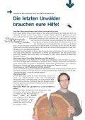 .u-Materialien FSC K2 - Seite 4