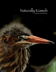 Naturally Kiawah Special Guest Edition - Kiawah Conservancy