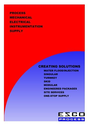 ESCO Process Profile Summary.pdf