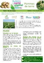 BSVPDT n°27 du 16 juillet 2013.pdf - DRAAF Nord-Pas-de-Calais