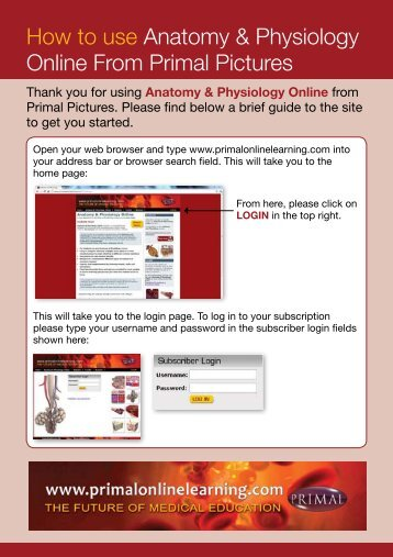 How to use Anatomy & Physiology Online From Primal Pictures