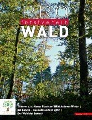 der Wald der Zukunft - Deutscher Forstverein