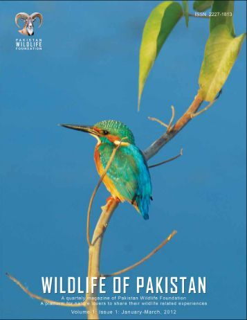 (Magazine) Volume 1 Issue 1 - Pakistan Wildlife Foundation