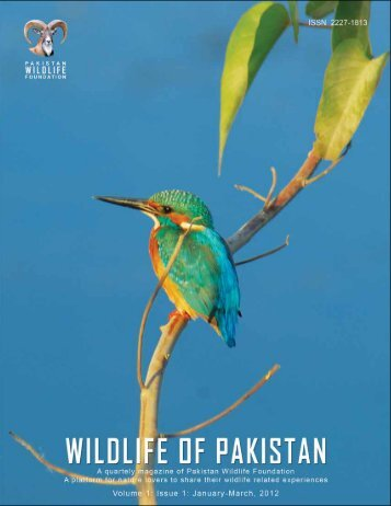 (Magazine) Volume 1 Issue 1 - Pakistan Wildlife Foundation