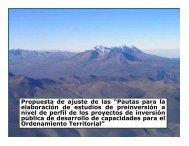 """Propuesta de ajuste de las """"Pautas para la elaboración de ... - PDRS"""